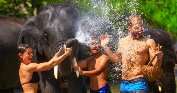 Elephant-Bath-710x375