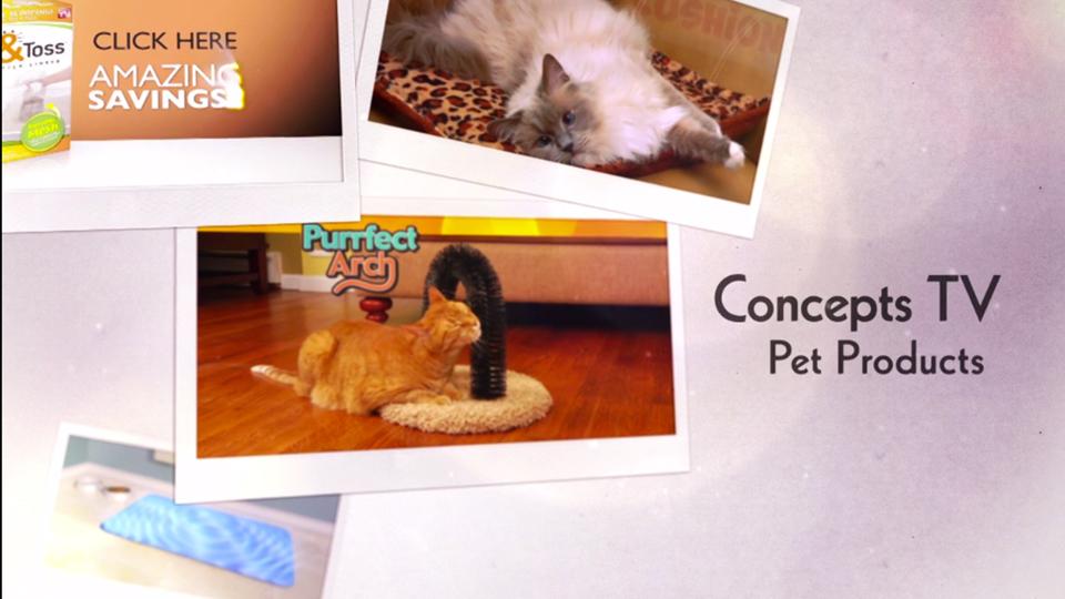 campaigns-pets