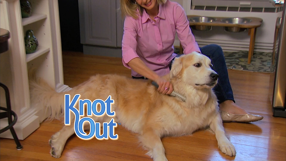 pets-knot-out